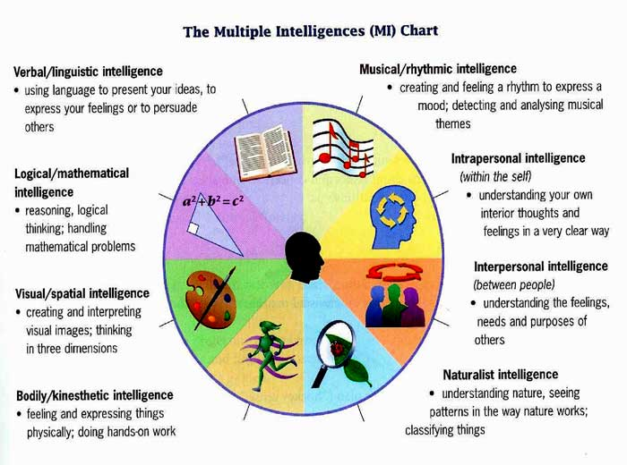 This multiple intelligences chart represents a variety of talents and skills that can make a person successful and appreciated